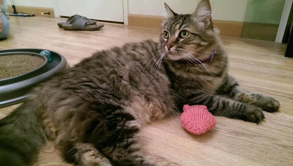 cheshire cat purse
